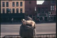http://www.nikstrangelove.com/files/gimgs/th-20_CatmanNashville.jpg