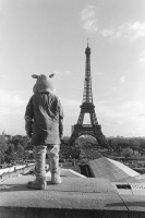 http://www.nikstrangelove.com/files/gimgs/th-20_ParisBunnyMan.jpg