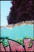 http://www.nikstrangelove.com/files/gimgs/th-23_Wall&TreeOlhao.jpg