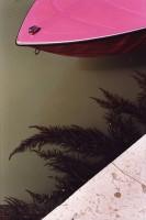 http://www.nikstrangelove.com/files/gimgs/th-23_pinkboatandseaweed.jpg