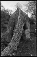 http://www.nikstrangelove.com/files/gimgs/th-48_megalosaurus1.jpg