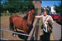 http://www.nikstrangelove.com/files/gimgs/th-52_Horse&Lady_v2.jpg